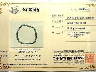 5000GOMBDIA02-1.jpg